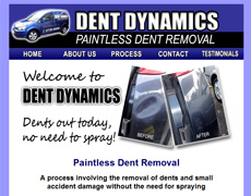 Dent Dynamics - paintless dent removal